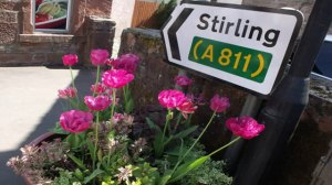stirling-sign